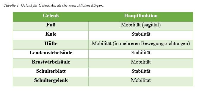 Tabelle 1 Gelenk -Gelenk Ansatz