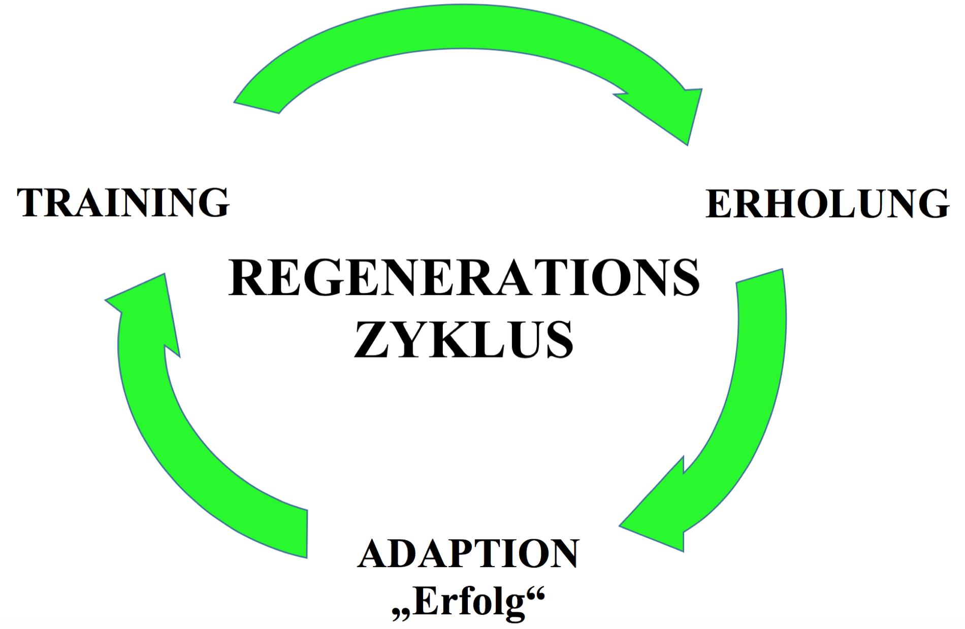 REG ZYKLUS